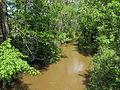 Pinconning River Pinconning Township Michigan.jpg