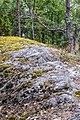 Pirkanmaa, Finland - panoramio (59).jpg