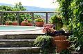 Piscina y parte del jardín. El Puy. Castigaleu - Guadalupe Cervilla.jpg