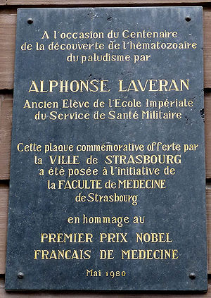 Charles Louis Alphonse Laveran - Commemorative plaque at the Château à Strasbourg