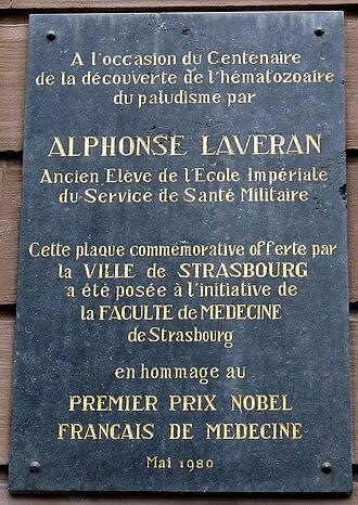 Charles Louis Alphonse Laveran - Commemorative plaque at the Château à Strasbourg