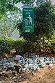 Plastikmüll in Asien Sri Lanka (30073572915).jpg