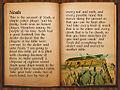 Poker bible - Noah.jpg