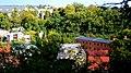 Polska ,Koronowo - widok miasta z punktu widokowego 15 - panoramio (5).jpg