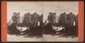 Pond, Eldridge Park, Elmira, N.Y, by J. H. Whitley.png