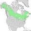 Populus balsamifera range map 1.png