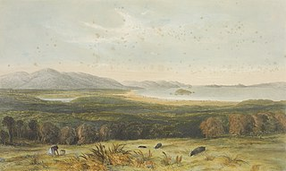Port Nicholson from the hills above Pitone in 1840.