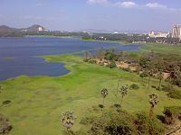 Powai Lake Summer.JPG