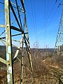 PowerLineCutWebbMountainPaugussettTrail.JPG