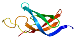 Protein CSDA PDB 1h95.png