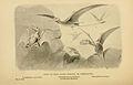 Pterodactyls.jpg