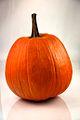 Pumpkin 252 - Evan Swigart.jpg