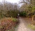 Quarry Moor (99).JPG
