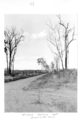 Queensland State Archives 4311 Roads to new farms at Childers Soldiers Settlement 1950.png