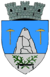 Coat of arms of Slănic