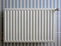 Radiator op blauw-wit-gestreepte tegels.JPG