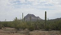 Ragged Top Ironwood Forest National Monument Arizona 2014.jpg