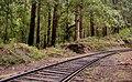 Rail Pa - 2017 (39583481422).jpg