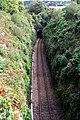 Railway Cutting near Luxulyan - geograph.org.uk - 565763.jpg