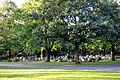 Ravensburg Westfriedhof 01.jpg