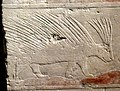 Relief of porcupine in an Egyptian desert, detail of a wall fragment from the grave of Penhenuka at Saqqara, Egypt, Old Kingdom, 5th Dynasty, c. 2500 BCE. Neues Museum.jpg