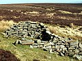 Remains of a Cabin on Cabin Hill - geograph.org.uk - 368249.jpg
