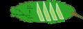 Representación simplificada del proceso que ocurre en el ultimo instar de la larva de M. sexta antes de iniciar la metamorfosis..png