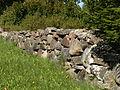 Ridala uus kalmistu.JPG