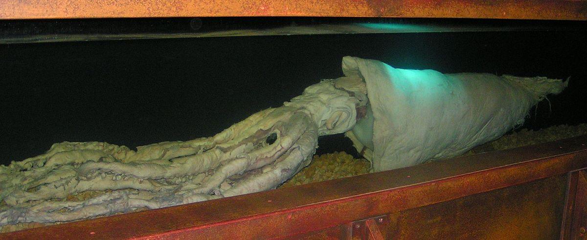 Riesen Kalmar