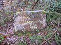 Ritterstein 200 Ruine Gruenbacher-Hof a.JPG