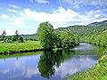 River Farrar - geograph.org.uk - 467517.jpg