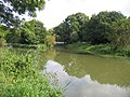 River Ivel, Holme, Beds - geograph.org.uk - 52422.jpg