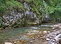 River Mali Rzav and Visocka Banja Spa in Serbia - 4283.NEF 11.jpg