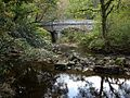 River Teign at Steps Bridge - geograph.org.uk - 1747525.jpg
