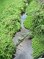 River Welland in Market Harborough 04.jpg