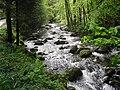 River shot near to Abergwynant - geograph.org.uk - 1311960.jpg