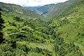 River valley towards GAMGADHI. - panoramio.jpg