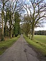 Road in Wellington College grounds - geograph.org.uk - 1161758.jpg