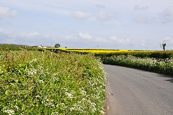 Road to the A48 near Llancarfan - geograph.org...