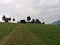 Roccolo - panoramio.jpg