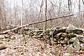 Rock Walls Near Corbin Cabin (26383674993).jpg