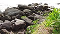 Rocks on the beach, Bramston Beach, 2018.jpg