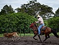 Rodeo Event Calf Roping 24.jpg