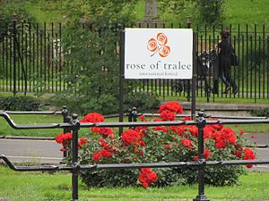 Rose of Tralee (festival) - Floral display with festival logo, 2014