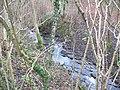 Rowley Brook - geograph.org.uk - 645159.jpg