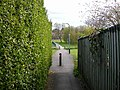 Rugby-Beaconsfield Avenue - geograph.org.uk - 1831466.jpg