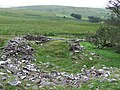 Ruined Dwelling, near Nant Cynydd, Ceredigion - geograph.org.uk - 512545.jpg