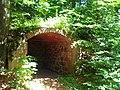 Ruiny zamku - panoramio (4).jpg