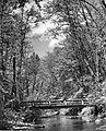 Rustic bridge in Silver Creek Falls Park (6478862359).jpg