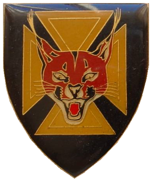 7 South African Infantry Battalion - SANDF 7 SAI Emblem